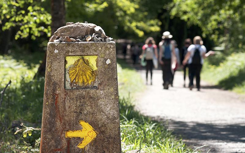 Do the Camino alone or accompanied?  What should I do?