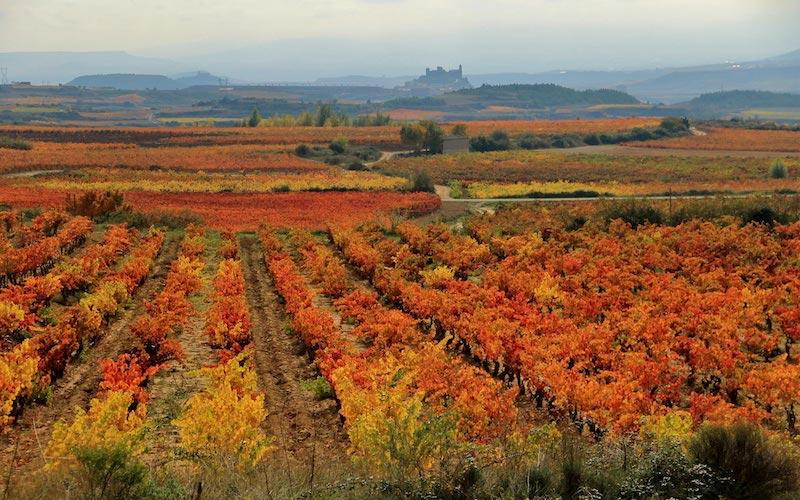 Why autumn is a good season to visit northern Spain